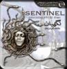 Sentinel Descendants in Time.png